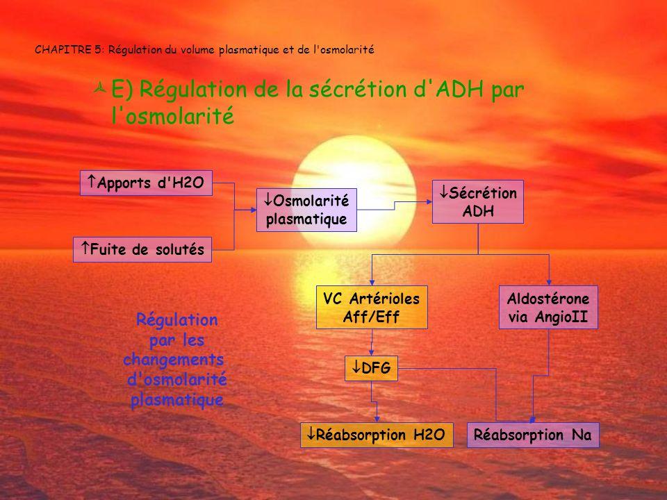 CHAPITRE 5: Régulation du volume plasmatique et de l'osmolarité E) Régulation de la sécrétion d'ADH par l'osmolarité Osmolarité plasmatique Sécrétion