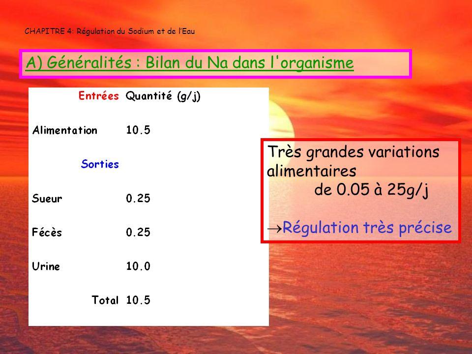 CHAPITRE 4: Régulation du Sodium et de lEau A) Généralités : Bilan du Na dans l'organisme Très grandes variations alimentaires de 0.05 à 25g/j Régulat