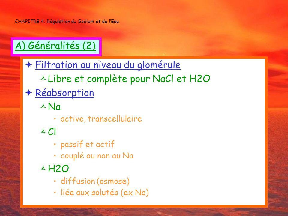 CHAPITRE 4: Régulation du Sodium et de lEau Filtration au niveau du glomérule Libre et complète pour NaCl et H2O Réabsorption Na active, transcellulai