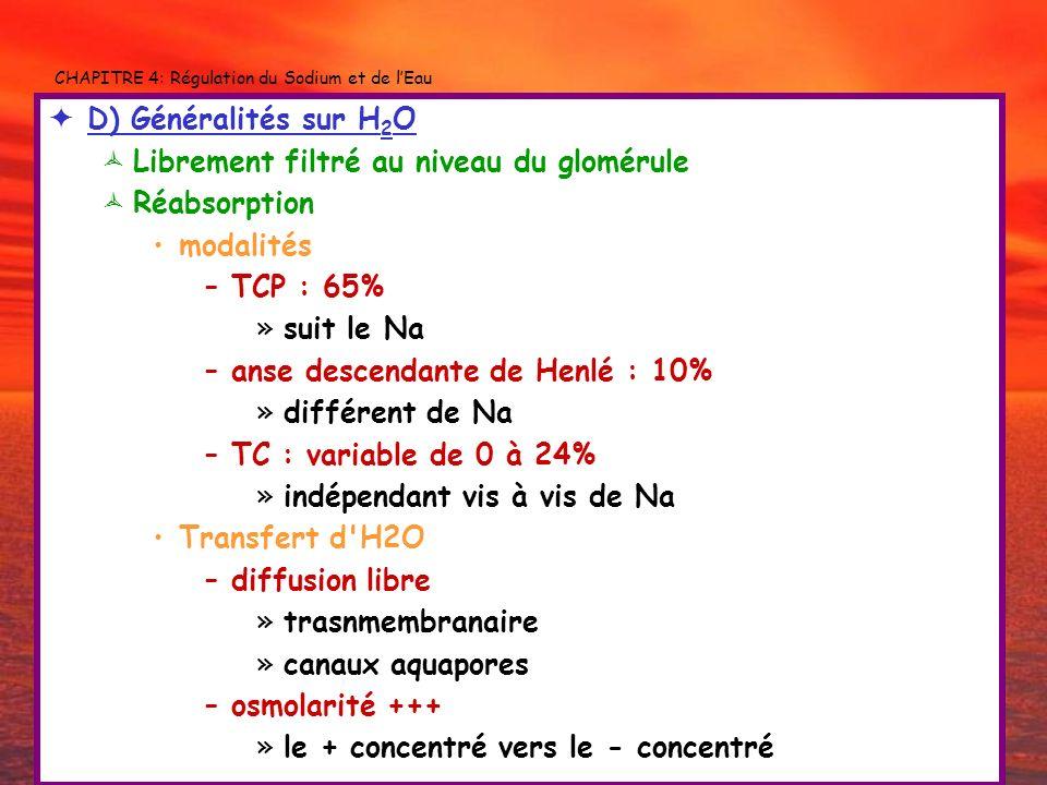 CHAPITRE 4: Régulation du Sodium et de lEau D) Généralités sur H 2 O Librement filtré au niveau du glomérule Réabsorption modalités –TCP : 65% »suit l