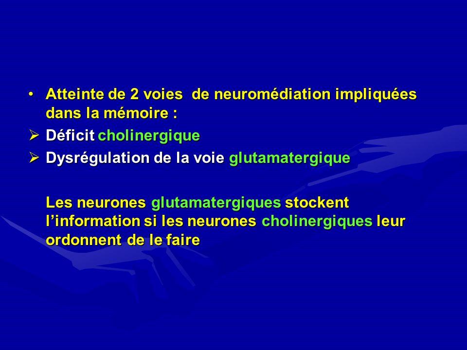 Atteinte de 2 voies de neuromédiation impliquées dans la mémoire :Atteinte de 2 voies de neuromédiation impliquées dans la mémoire : Déficit cholinerg