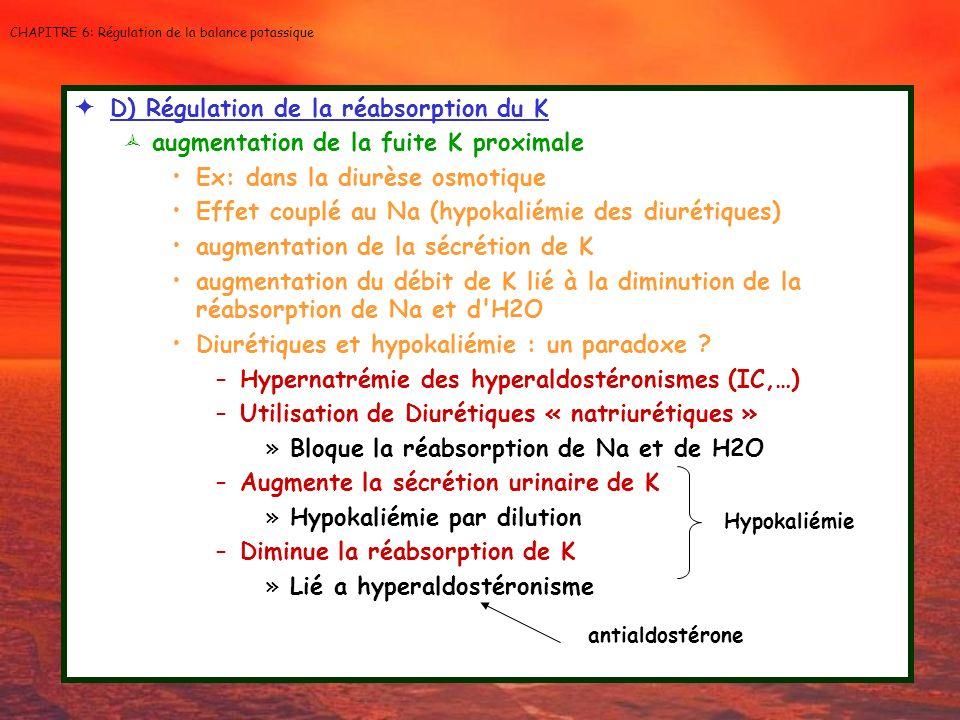 CHAPITRE 6: Régulation de la balance potassique D) Régulation de la réabsorption du K augmentation de la fuite K proximale Ex: dans la diurèse osmotiq