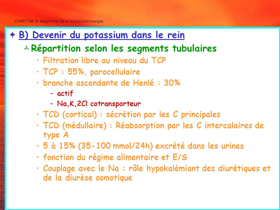 CHAPITRE 6: Régulation de la balance potassique B) Devenir du potassium dans le rein Répartition selon les segments tubulaires Filtration libre au niv