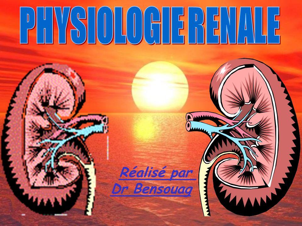 Réalisé par Dr Bensouag