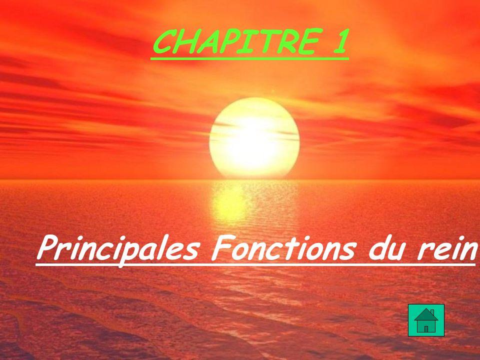 Principales Fonctions du rein CHAPITRE 1
