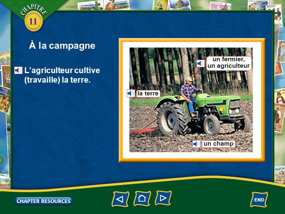 11 À la campagne Le fermier entrepose son matériel agricole dans un hangar. une grange une ferme