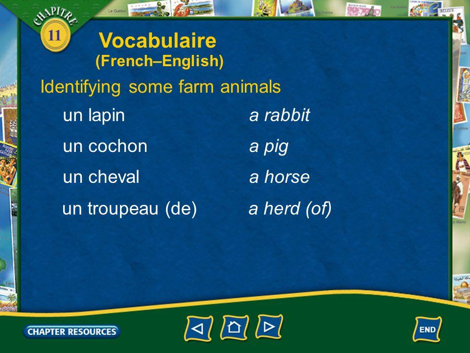 11 Identifying some farm animals une vachea cow un moutona sheep un veaua calf un agneaua lamb une poulea chicken Vocabulaire (French–English)