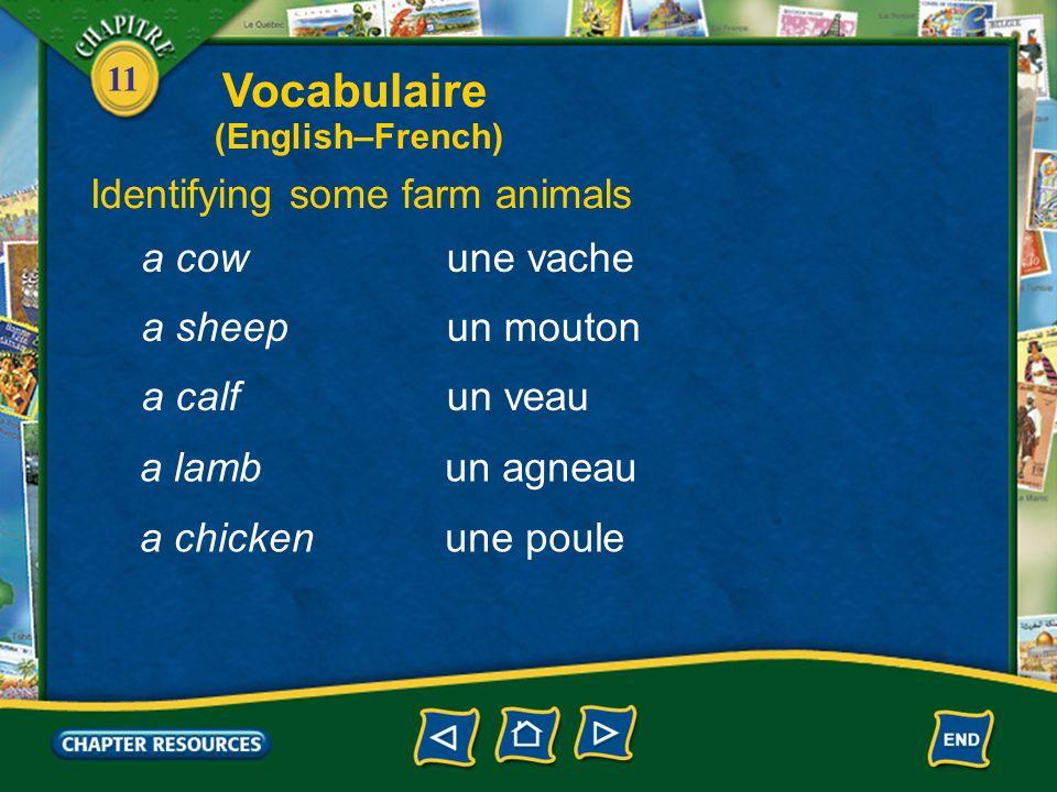 11 Describing the country les céréales (f. pl.)grains entreposerto store cultiverto farm, to cultivate le bléwheat Vocabulaire (English–French)