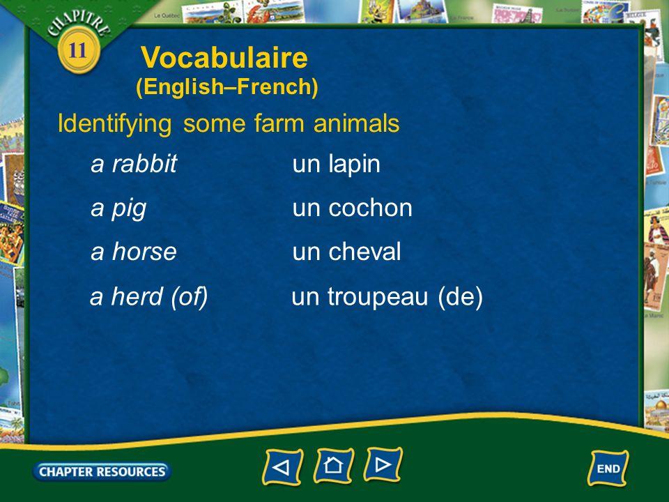 11 Identifying some farm animals une vachea cow un moutona sheep un veaua calf un agneaua lamb une poulea chicken Vocabulaire (English–French)