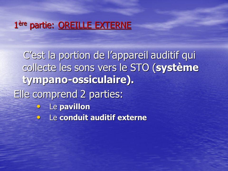 1 ère partie: OREILLE EXTERNE Cest la portion de lappareil auditif qui collecte les sons vers le STO (système tympano-ossiculaire). Cest la portion de