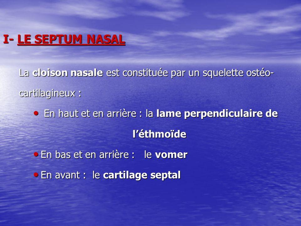 I- LE SEPTUM NASAL La cloison nasale est constituée par un squelette ostéo- La cloison nasale est constituée par un squelette ostéo- cartilagineux : c