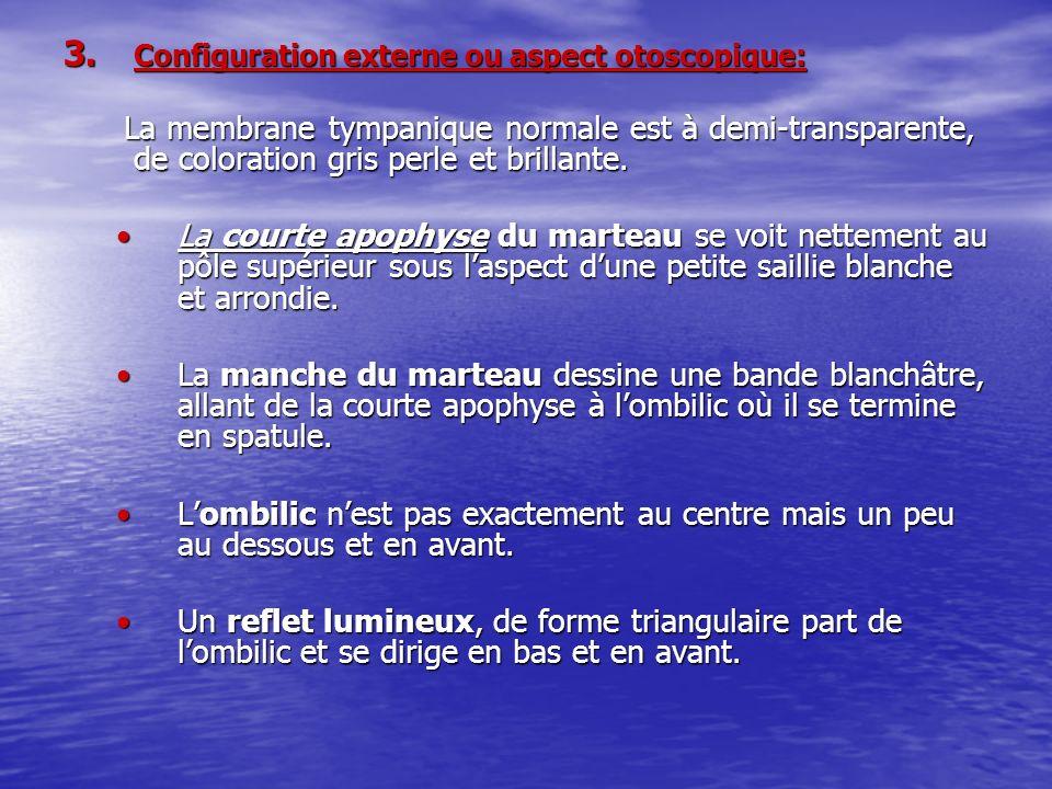 ELEMENTS CONSTITUANT LE LARYNX A- CARTILAGES ET MEMBRANES 1.