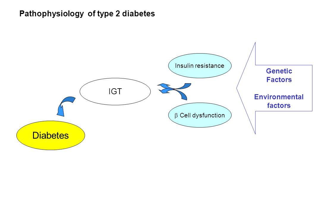 Pathophysiology of type 2 diabetes Diabetes IGT Cell dysfunction Insulin resistance Genetic Factors Environmental factors