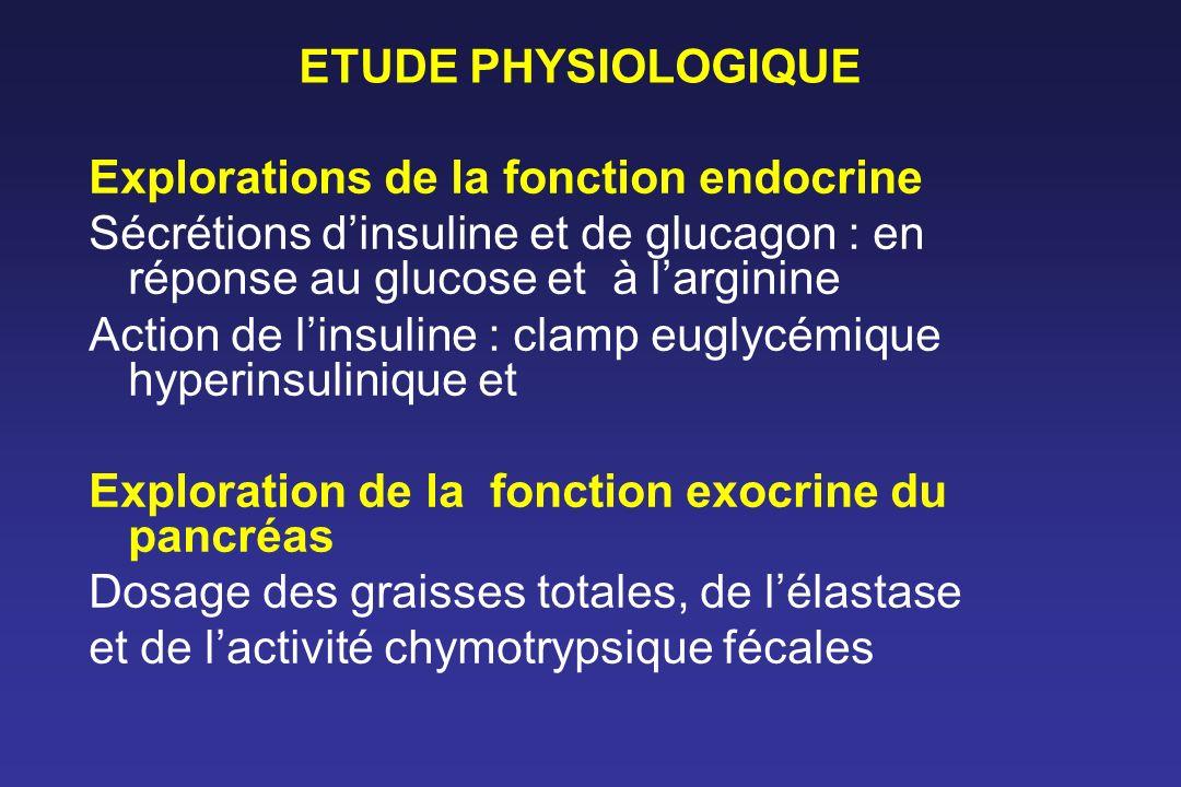 Explorations de la fonction endocrine Sécrétions dinsuline et de glucagon : en réponse au glucose et à larginine Action de linsuline : clamp euglycémi