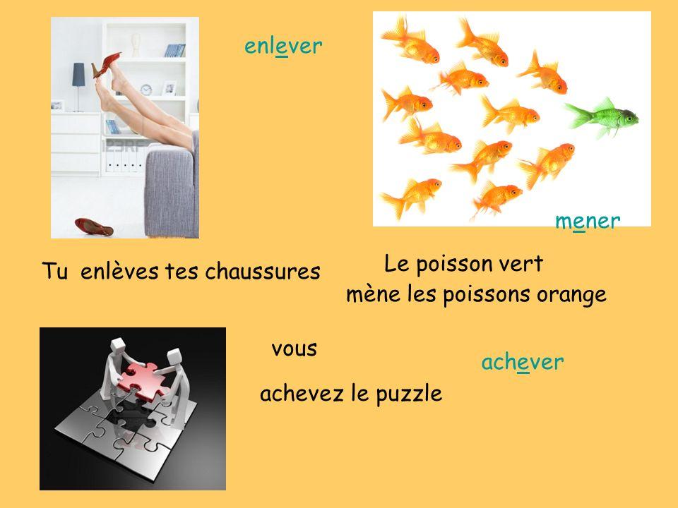 enlèves tes chaussuresTu Le poisson vert mène les poissons orange vous achevez le puzzle enlever mener achever