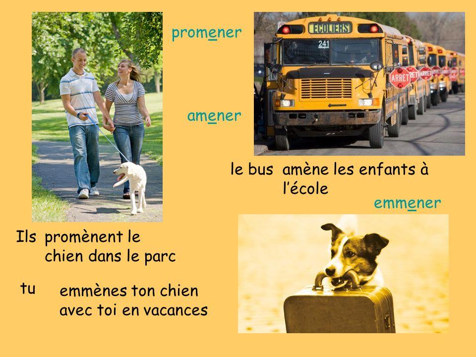 Ilspromènent le chien dans le parc le busamène les enfants à lécole tu emmènes ton chien avec toi en vacances promener amener emmener