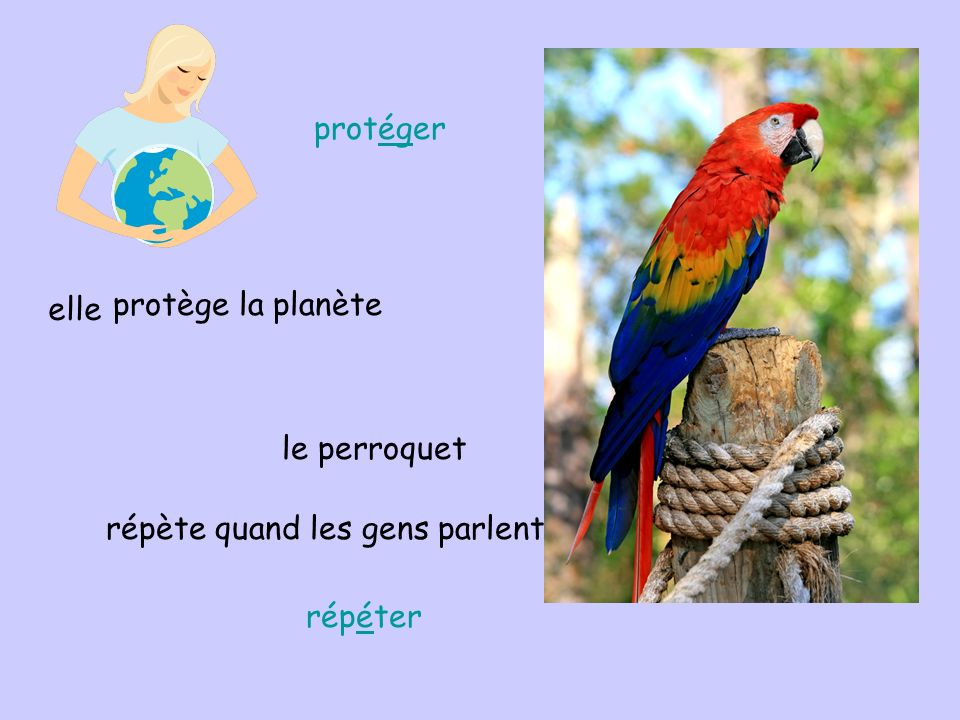 elle protège la planète le perroquet répète quand les gens parlent protéger répéter