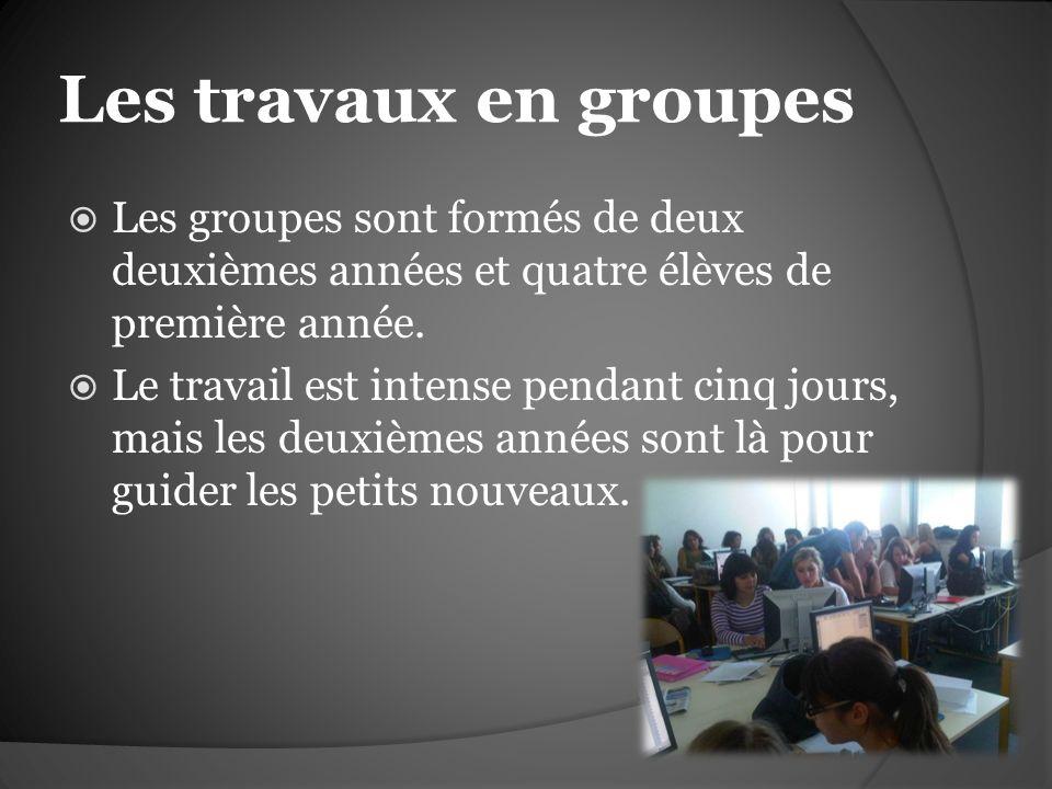 Les travaux en groupes Les groupes sont formés de deux deuxièmes années et quatre élèves de première année. Le travail est intense pendant cinq jours,