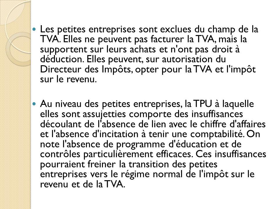 Les petites entreprises sont exclues du champ de la TVA. Elles ne peuvent pas facturer la TVA, mais la supportent sur leurs achats et n'ont pas droit