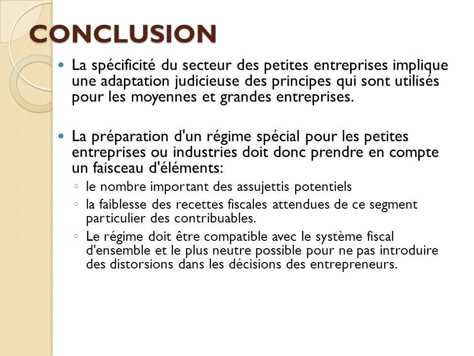 CONCLUSION La spécificité du secteur des petites entreprises implique une adaptation judicieuse des principes qui sont utilisés pour les moyennes et g