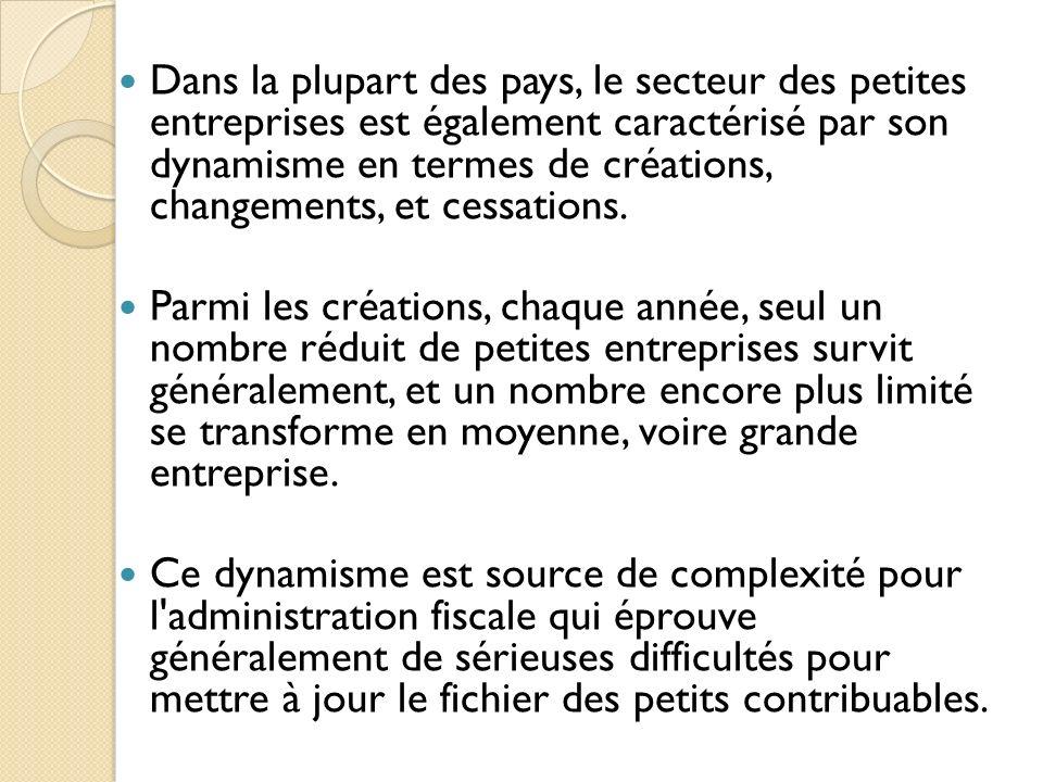 Dans la plupart des pays, le secteur des petites entreprises est également caractérisé par son dynamisme en termes de créations, changements, et cessa