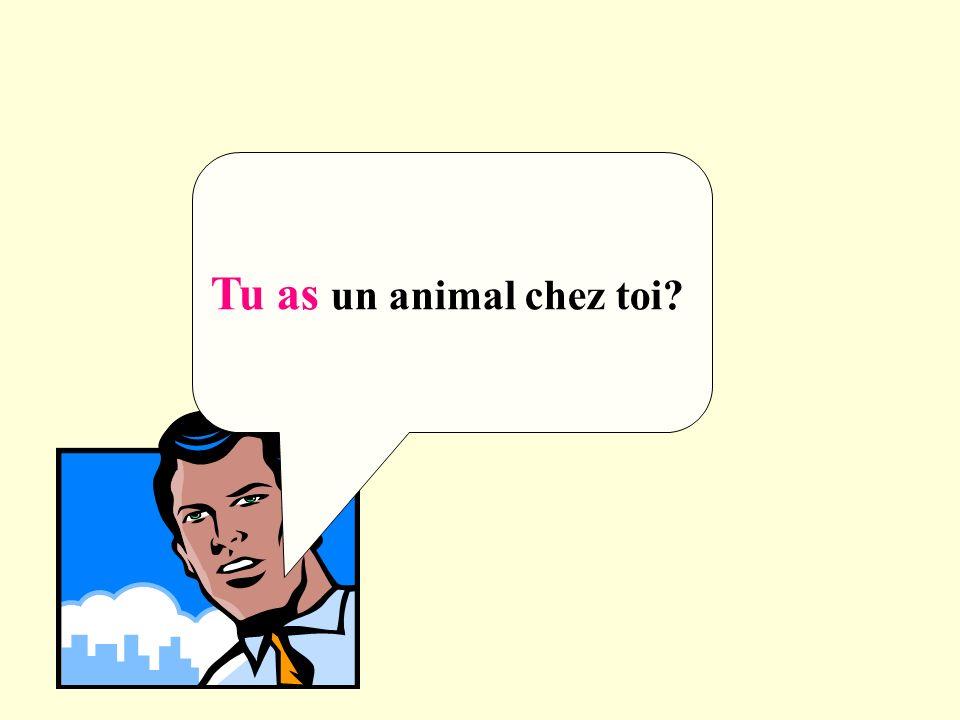Tu as un animal chez toi?