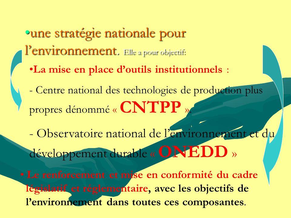 La mise en place doutils institutionnels : - Centre national des technologies de production plus propres dénommé « CNTPP ». - Observatoire national de