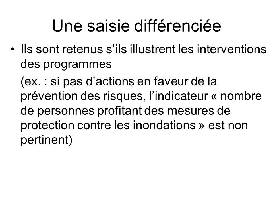 Une saisie différenciée Ils sont retenus sils illustrent les interventions des programmes (ex. : si pas dactions en faveur de la prévention des risque