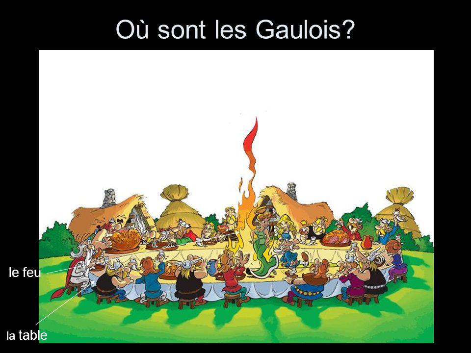 Où sont les Gaulois la table le feu