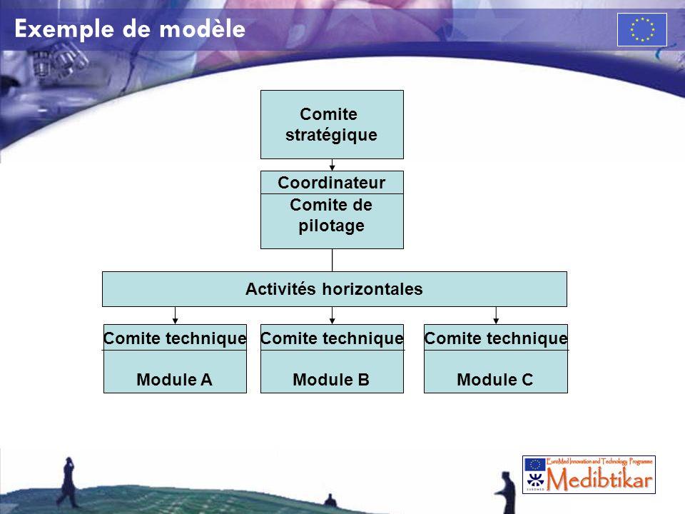 Exemple de modèle Comite stratégique Comite de pilotage Coordinateur Comite technique Module B Comite technique Module C Comite technique Module A Activités horizontales