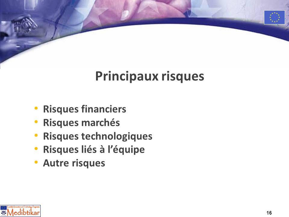 16 Principaux risques Risques financiers Risques marchés Risques technologiques Risques liés à léquipe Autre risques