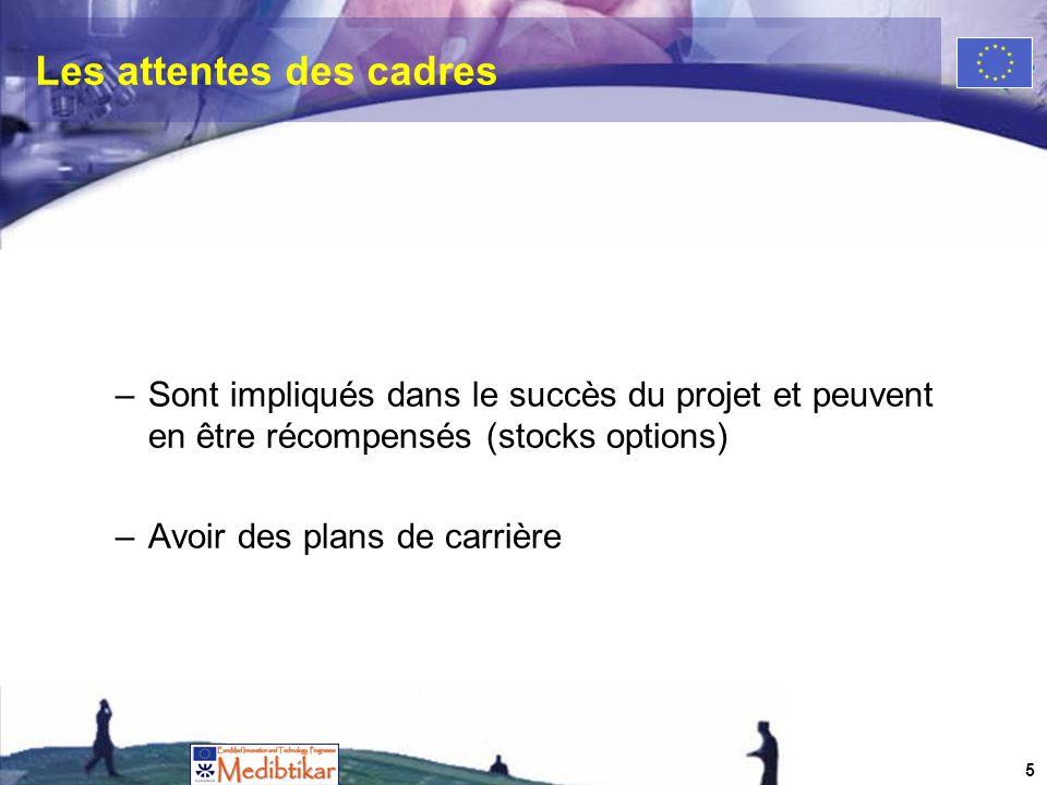Les attentes des cadres –Sont impliqués dans le succès du projet et peuvent en être récompensés (stocks options) –Avoir des plans de carrière 5