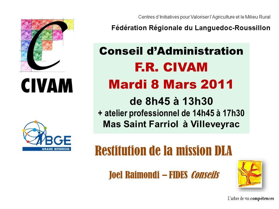 Association CADIFE : Quel Avenir ? - Restitution DLA du 18/05/2010 à Clermont lHérault - Joël Raimondi Cabinet FIDèS CONSEILS et Peter Ulrich Conseil