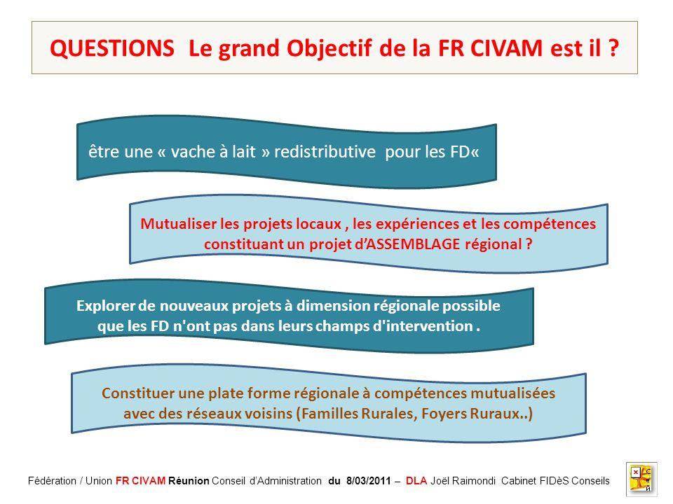 Association CADIFE : Quel Avenir ? - Restitution DLA du 18/05/2010 à Clermont lHérault - Joël Raimondi Cabinet FIDèS CONSEILS et Peter Ulrich QUESTION
