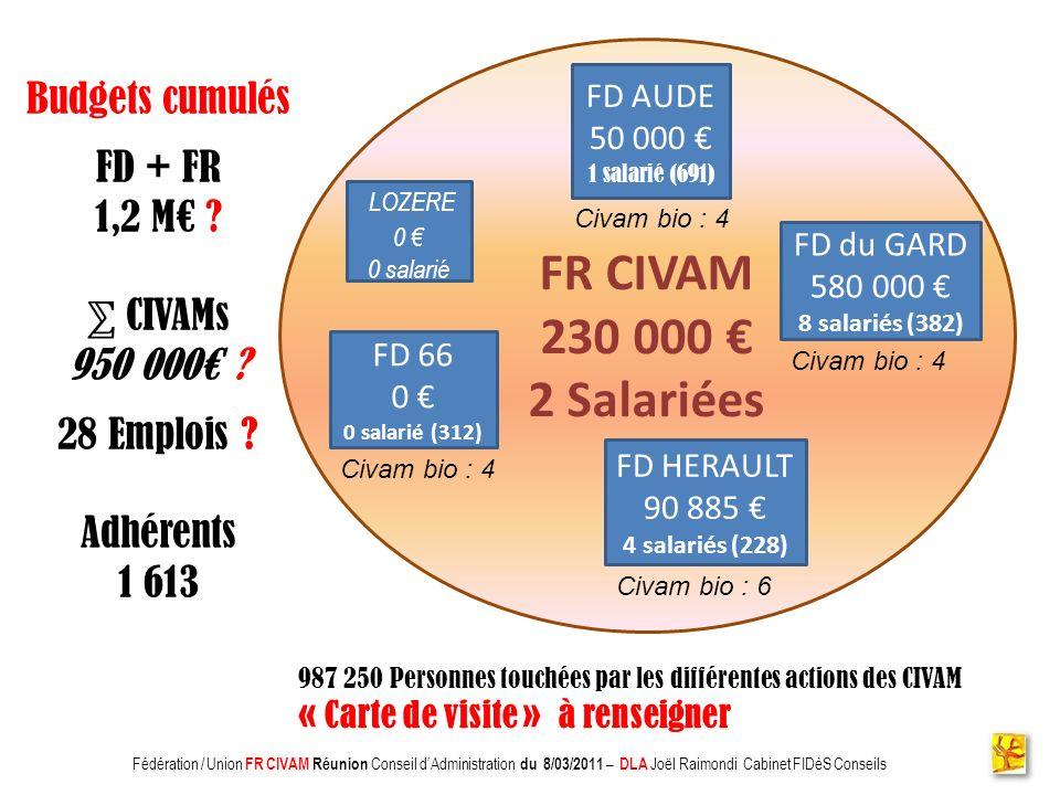 Association CADIFE : Quel Avenir ? - Restitution DLA du 18/05/2010 à Clermont lHérault - Joël Raimondi Cabinet FIDèS CONSEILS et Peter Ulrich FR CIVAM