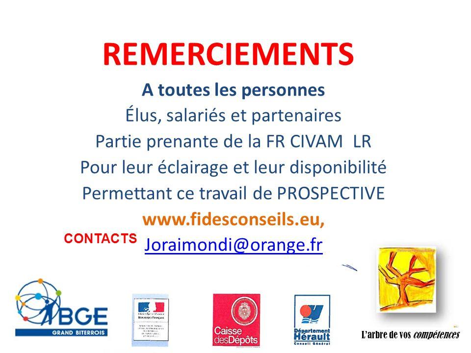 Association CADIFE : Quel Avenir ? - Restitution DLA du 18/05/2010 à Clermont lHérault - Joël Raimondi Cabinet FIDèS CONSEILS et Peter Ulrich REMERCIE