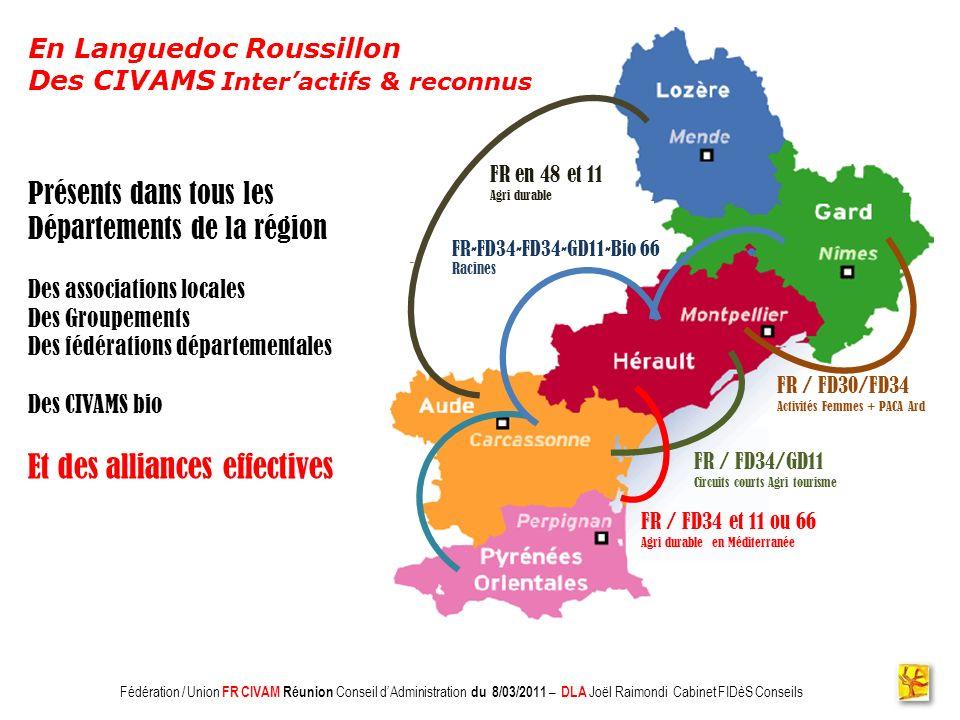 Association CADIFE : Quel Avenir ? - Restitution DLA du 18/05/2010 à Clermont lHérault - Joël Raimondi Cabinet FIDèS CONSEILS et Peter Ulrich Présents