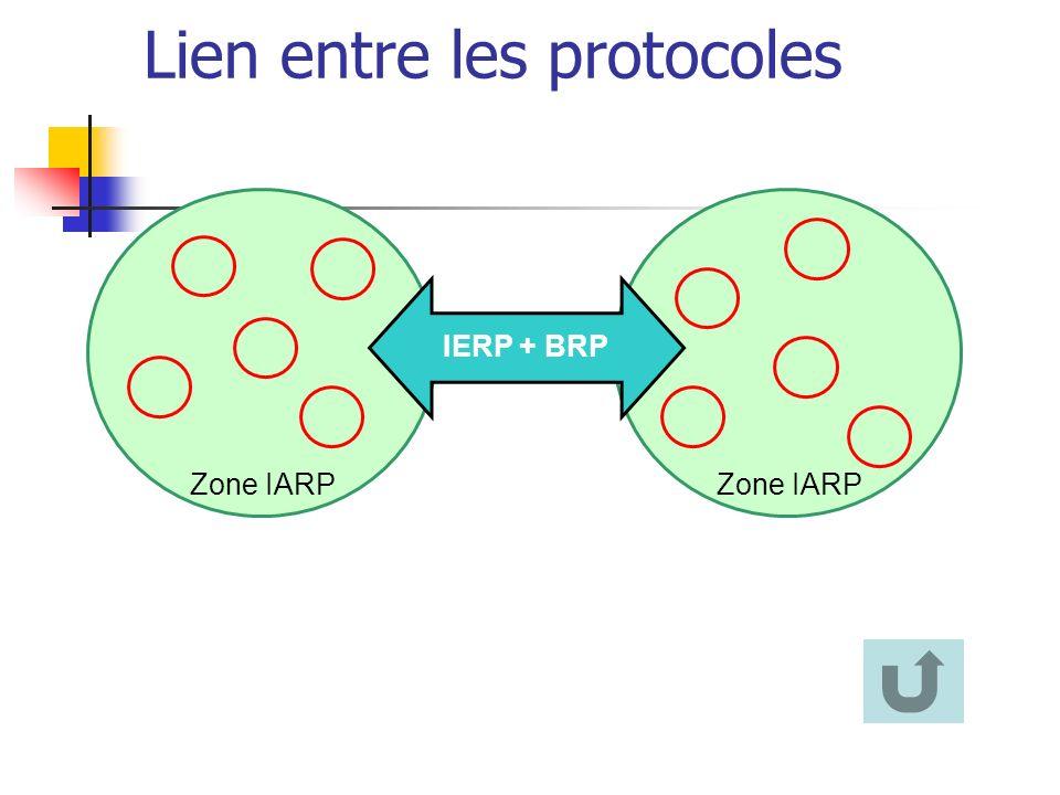 Zone IARP IERP + BRP Lien entre les protocoles