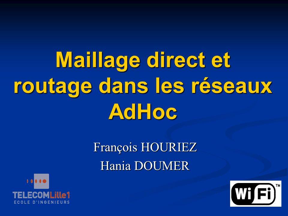 Maillage direct et routage dans les réseaux AdHoc François HOURIEZ Hania DOUMER