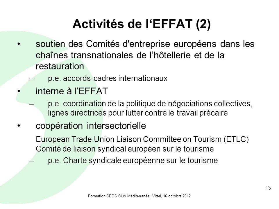 13 Activités de lEFFAT (2) soutien des Comités d entreprise européens dans les chaînes transnationales de lhôtellerie et de la restauration –p.e.
