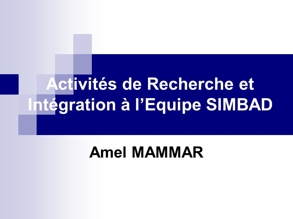 Activités de Recherche et Intégration à lEquipe SIMBAD Amel MAMMAR