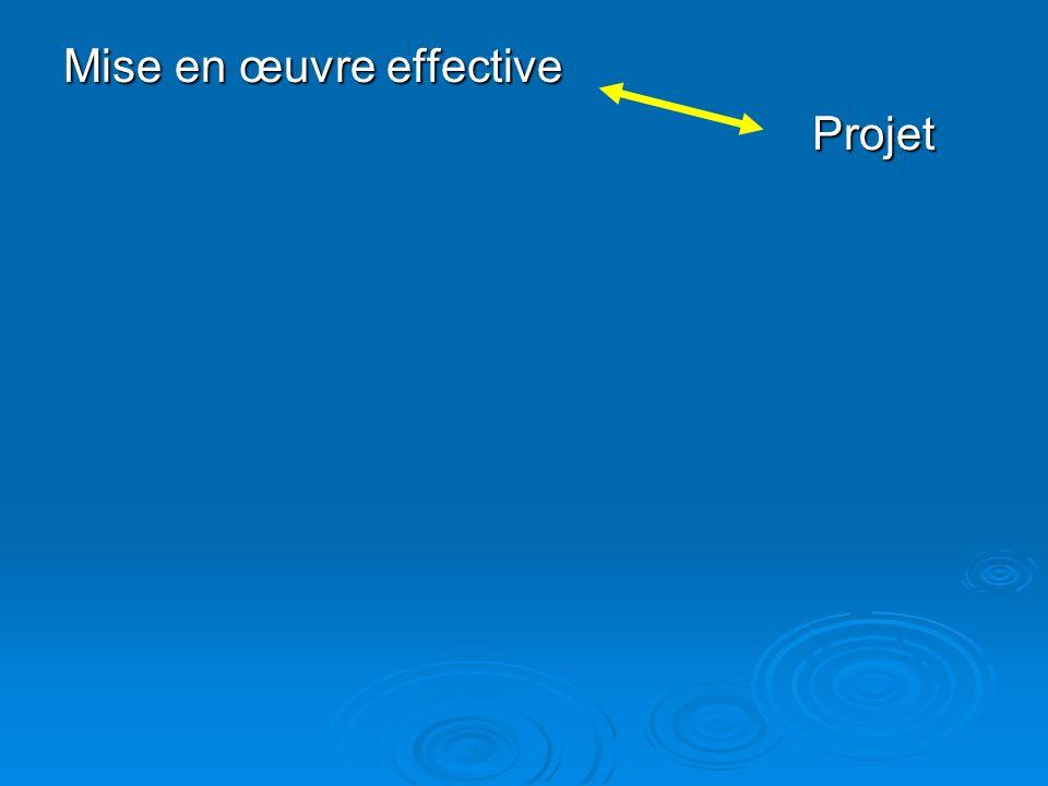 Mise en œuvre effective Projet Projet
