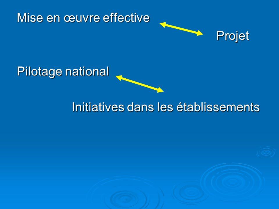 Mise en œuvre effective Projet Projet Pilotage national Initiatives dans les établissements Initiatives dans les établissements