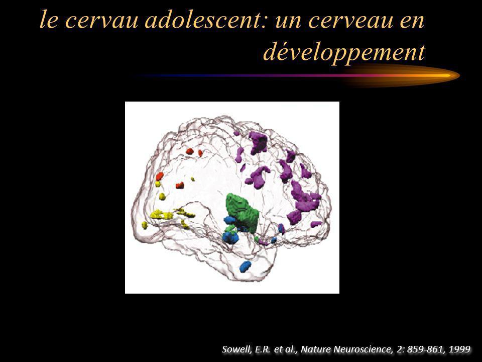 le cervau adolescent: un cerveau en développement Sowell, E.R.