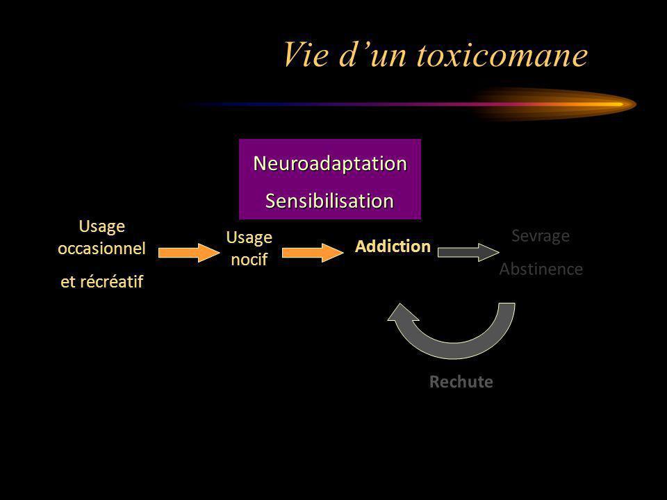Vie dun toxicomane Usage nocif Usage occasionnel et récréatif Addiction Sevrage Abstinence Rechute NeuroadaptationSensibilisation