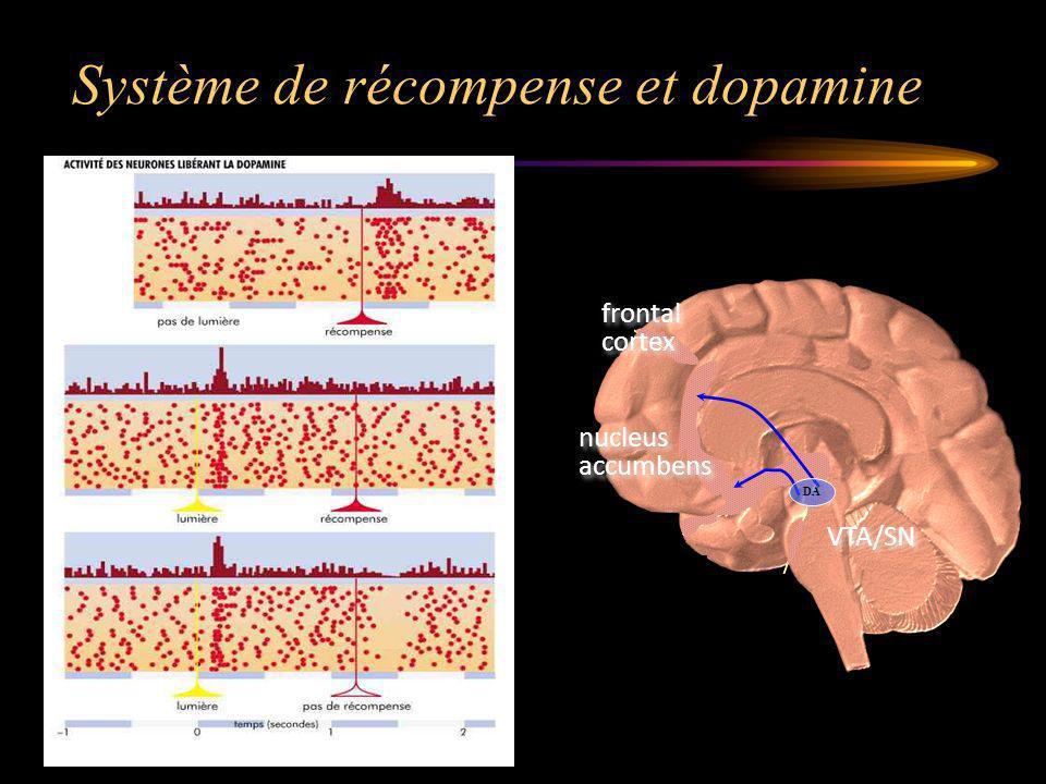 Système de récompense et dopamine VTA/SN nucleus accumbens nucleus accumbens frontal cortex frontal cortex DA