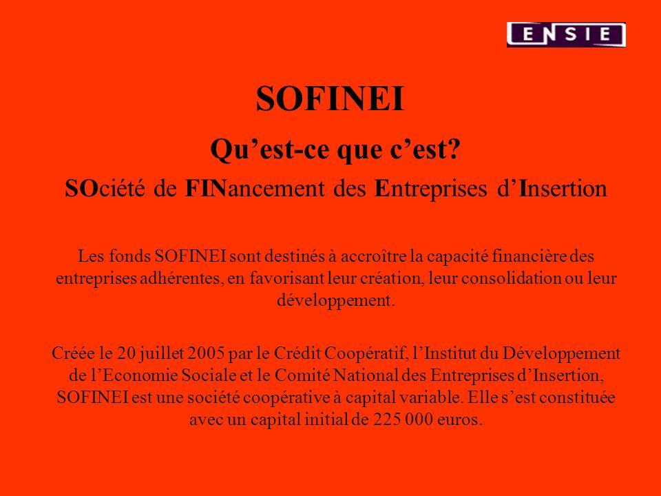 SOFINEI Quest-ce que cest? SOciété de FINancement des Entreprises dInsertion Les fonds SOFINEI sont destinés à accroître la capacité financière des en