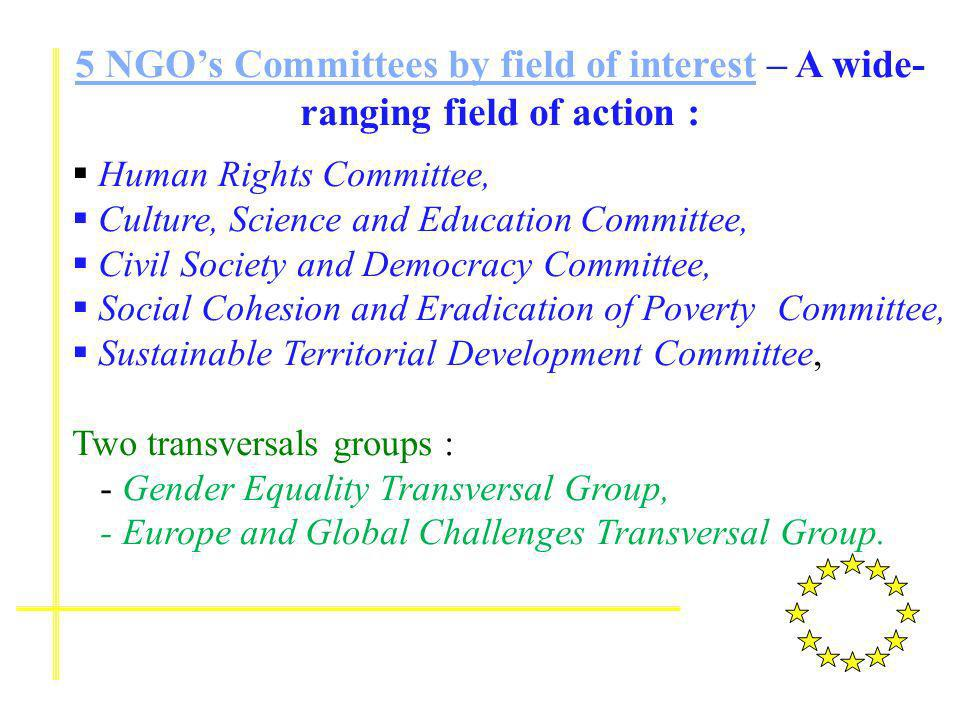 5 NGOs Committees by field of interest5 NGOs Committees by field of interest – A wide- ranging field of action : Human Rights Committee, Culture, Science and Education Committee, Civil Society and Democracy Committee, Social Cohesion and Eradication of Poverty Committee, Sustainable Territorial Development Committee, Two transversals groups : - Gender Equality Transversal Group, - Europe and Global Challenges Transversal Group.