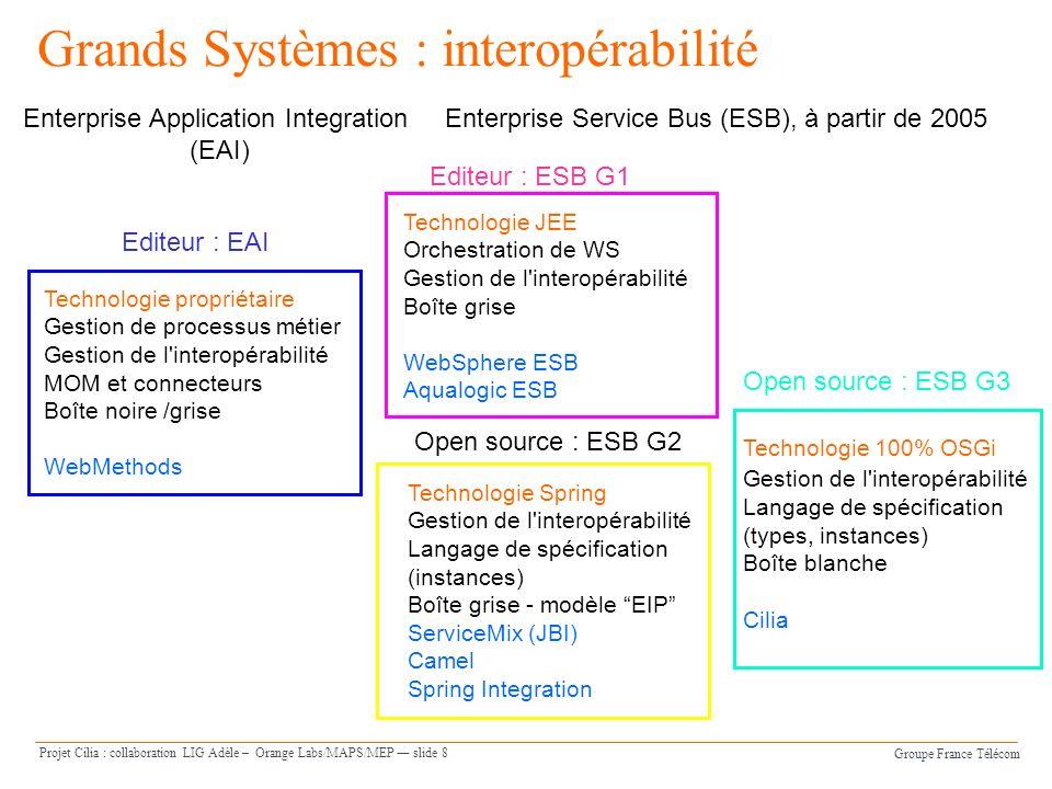 Groupe France Télécom Projet Cilia : collaboration LIG Adèle – Orange Labs/MAPS/MEP slide 8 Grands Systèmes : interopérabilité Enterprise Application
