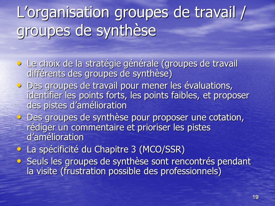19 Lorganisation groupes de travail / groupes de synthèse Le choix de la stratégie générale (groupes de travail différents des groupes de synthèse) Le